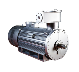 Explosion-proof Motor(HV): Explosion-proof motors require durability and high performance because they are installed in an environment where explosive gas ...